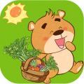 小熊的菜园